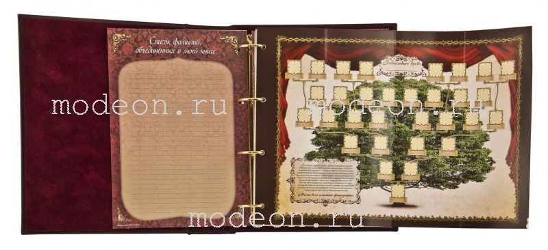 Родословная книга Царская, премиум